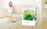 リビングで野菜を育てられる、コンパクトな水耕栽培器『Green Farm Cube』(ユーイング)