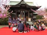 2本の河津桜が満開を迎えたさくら幼稚園 (C)ORICON NewS inc.