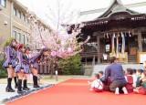 さくら幼稚園の園児がお花見をしているとHKT48がサプライズ登場!=3rdシングル発表記念サプライズイベント (C)ORICON NewS inc.