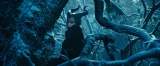 """主人公は""""永遠の眠り""""の呪いをかける邪悪な妖精マレフィセント(C)2014 Disney Enterprises, Inc. All Rights Reserved."""