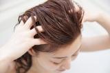 空気が乾燥してくるこれからの時期は、頭皮や髪のトラブルにご注意を