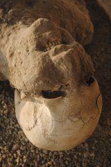 ポンペイ遺跡では石膏復元した遺体の人型が当時の悲劇を伝える(C)TBS