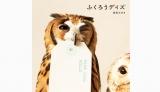 ふくろうの写真集『ふくろうデイズ』(角川マガジンズ/5月28日発売)も登場