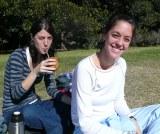 """ブラジルでは""""国民茶""""として愛飲されているマテ茶"""