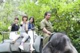 象にまたがるフレンチ・キス(左から)柏木由紀、高城亜樹、倉持明日香=『フレンチ・キスのキス旅』番組カット