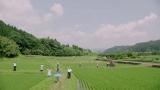 総選挙12位のSNH48兼SKE48の宮澤佐江(AKB48の37th「心のプラカード」MVより)