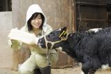 8月10日放送、TBS系『十勝が教えてくれた3つのこと。〜17歳の農村体験  未来への種まき〜』で子牛の世話をする女優の南沢奈央(C)HBC