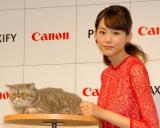 """共演した""""猫""""にメロメロの桐谷美玲 (C)ORICON NewS inc."""