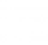 封入・販促用特典なし、真っ白なジャケットデザインのシングル「ローラの傷だらけ」。「461円(税別)」と「しろい」価格で発売された