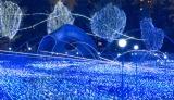 東京ミッドタウンのクリスマスイベントで展開されるイルミネーション(写真は昨年のもの)