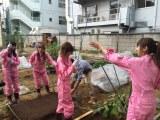 テレ朝動画の新番組『サイサイてれび!(おちゃの娘サイサイ)』で初めてのロケで野菜作りをするメンバー。農業高校出身のすぅの手つきにメンバーも驚き(C)テレビ朝日