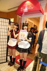 SUNSHINE SAKAE 5階のコスプレの聖地「CospRex」ではメンバーもコスプレ衣装で登場(C)AKS