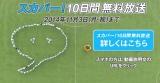 動画「70人対7人でサッカーをしたら大変なことになった」のワンシーン。70人の円陣は尋常ではない規模に…