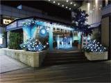 ルミネのクリスマスは『アナと雪の女王』がテーマ。「ルミネ有楽町」には、足を踏み込むと氷のツリーが光り輝く魔法体験ができる、LEDストリップライトを使ったフォトスポットがお目見え(C)Disney
