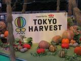 今年で2年目を迎えた、『東京ハーヴェスト』 (C)ORICON NewS inc.