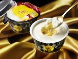 あの絶品チーズタルトがアイスに!『PABLO とろける美味しさチーズタルト』