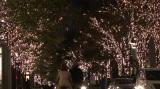 大手町と有楽町を結ぶ仲通りの街路樹が光り輝く丸の内イルミネーション (C)ORICON NewS inc.