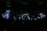 3日間限定『JOHNNIE WALKER presents 深海 ブラック バー』 巨大スクリーンに映し出された深海の映像
