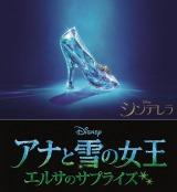 大ヒット作『アナと雪の女王』短編映画の邦題が『アナと雪の女王/エルサのサプライズ』に決定