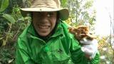 島に到着した織田はさっそく山へ、食材探し(C)テレビ朝日