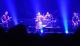 ライブでは1万人以上のファンが熱狂=THE BOOM 武道館ライブ (C)ORICON NewS inc.