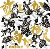 オリコン年間シングルセールス部門で3位を獲得したAKB48の「前しか向かねえ」(115.4万枚)