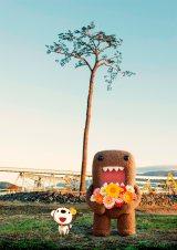 NHKの新しい東日本大震災・復興支援キャンペーン「花は咲く あなたに咲く」がスタート(C)NHK