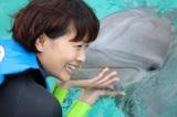 ムヘーレス島ではイルカと泳いだ(C)BS朝日