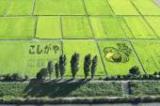 過去の「こしがや田んぼアート」での作品(2010年 鴨ネギ鍋のマスコットキャラクター・ガーヤちゃん)