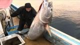 大マグロを釣り上げた大間最年少の漁師・泉健志さん。テレビ朝日系『マグロに賭けた男たち2015 極寒の死闘!息子よ これが男の勝負だSP』2月8日放送(C)テレビ朝日