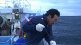 2014年、東京・築地の初セリで最高値となったマグロを釣り上げたスゴ腕漁師・竹内正弘さん(C)テレビ朝日