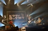 『ビクターロック祭り〜2015〜』に出演した斉藤和義 Photo by Rui Hashimoto/Azusa Takada[SOUND SHOOTER]