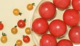 トマトの摂取は朝がねらい目?