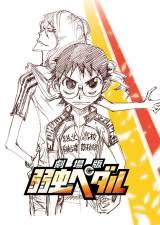 シナリオは、原作者・渡辺航氏の書き下ろしストーリー『劇場版 弱虫ペダル』2015年夏公開