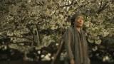 「見られないかもしれない」と言われていた2009年の桜の木の下で撮影