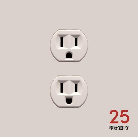 一次審査で最も得票数が多かった作品に贈られる特別賞は電気グルーヴ『25』