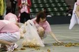 『第2回AKB48大運動会』罰ゲームで撤収作業をしたチームAの島崎遥香 (C)AKS