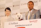 『ソフトバンク記者発表会』に出席した(左から)樋口可南子、白戸家のお父さん犬、ダンテ・カーヴァー (C)ORICON NewS inc.