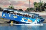 水陸両用バスでのベイサイド観光