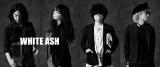 フジテレビの夏イベント「めざましライブ」8月10日:WHITE ASH