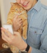 なぜ、猫アプリはヒットしやすいのか?
