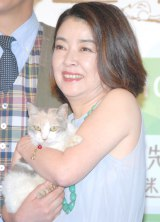 映画『先生と迷い猫』の完成披露試写会に出席した岸本加世子と三毛猫のドロップ (C)ORICON NewS inc.