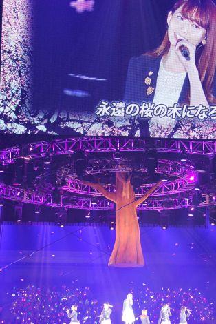 『AKB48ヤングメンバー全国ツアー〜未来は今から作られる〜』初日公演ゲストとしてAKB最年長の小嶋陽菜が登場 (C)ORICON NewS inc.