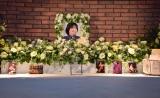 渡辺さんの祭壇 遺影は昨年12月に撮影(C)ORICON NewS inc.