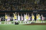 HKT48メンバー5人が指原莉乃センター曲「ハロウィン・ナイト」を披露(C)AKS
