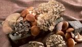 キノコはほかの野菜に比べ食物繊維・ビタミンB類・ビタミンD・カリウムが多く、健康や美容に良いんだとか