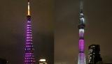 乳がん発見啓蒙活動「ピンクリボン」企画でピンク色にライトアップされた東京タワー(左)と東京スカイツリー(午後7時過ぎ撮影) (C)oricon ME inc.