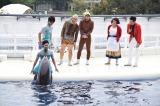 """京都水族館で披露された『爆笑!よしもとイルカパフォーマンス』で吉本新喜劇の鉄板ネタ""""乳首ドリル""""にイルカが挑戦(C)ORICON NewS inc."""