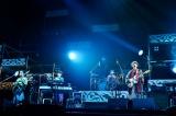 アリーナツアー最終公演を横浜アリーナで開催したゲスの極み乙女。 撮影/橋本塁(SOUND SHOOTER)