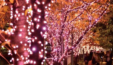 サムネイル 今年もイルミイベント開催! 目黒川沿いが桜カラーに ※写真は過去の実施風景
